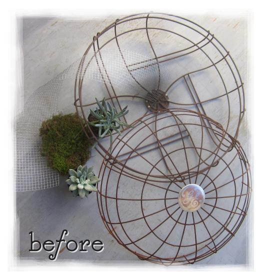 plantar no ventilador velho 1