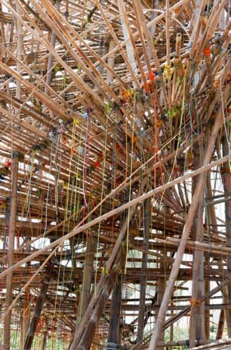 big-bambu 5