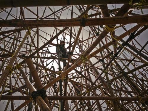 big-bambu 6