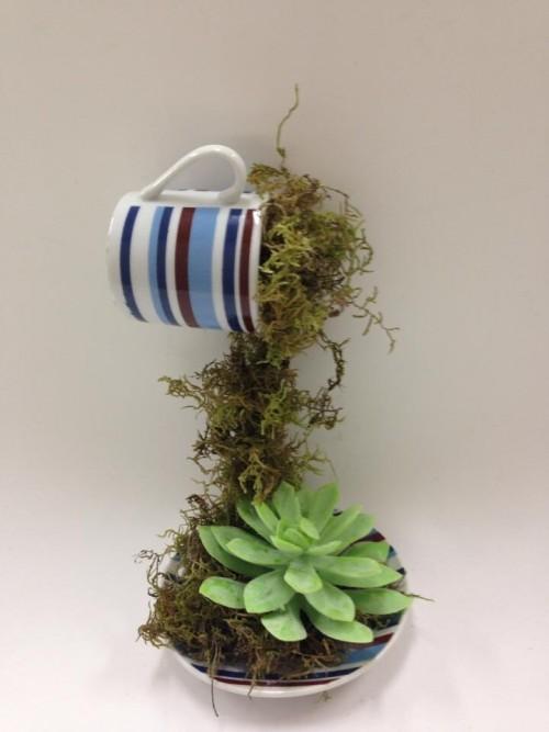 arranjo de plantas em xicara 1