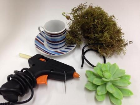 arranjo de plantas em xicara 2