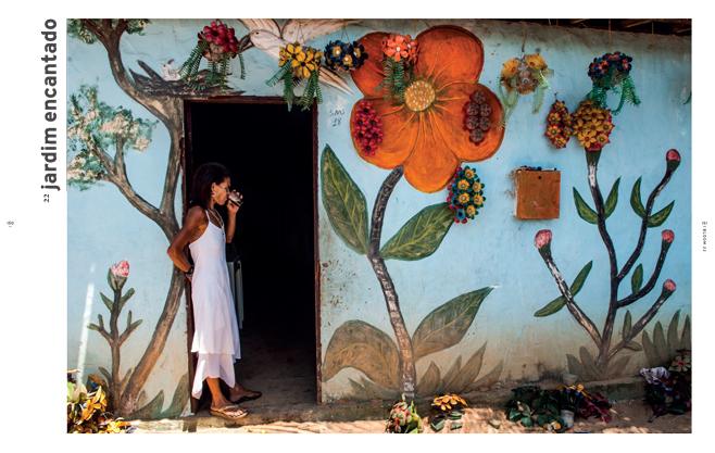 bloom brasil 2