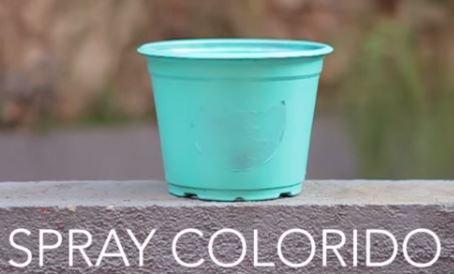 vasos de plantas com carinhas pintadas 05