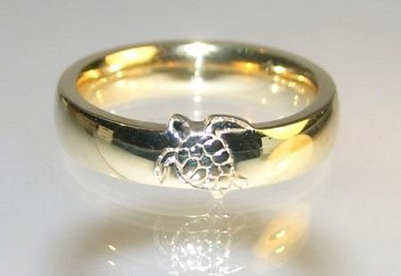 design inspirado nas tartarugas marinhas 02