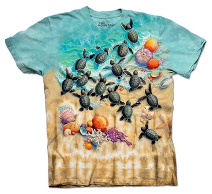 tartarugas marinhas 06