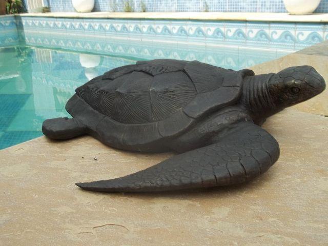 design inspirado nas tartarugas marinhas 07