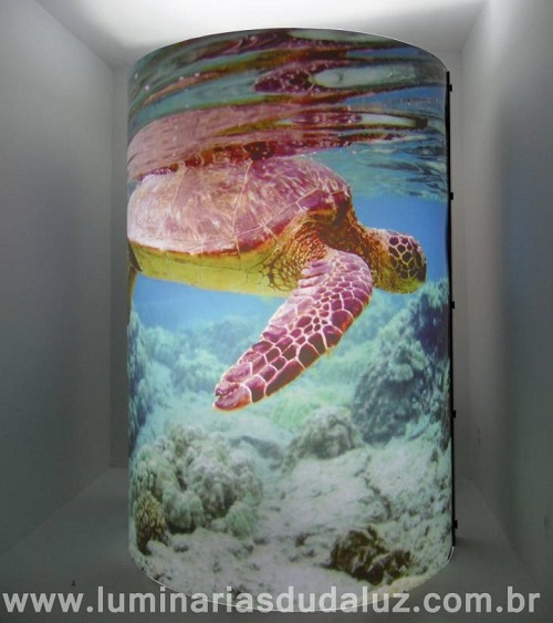 tartarugas marinhas 09
