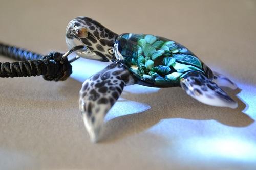 tartarugas marinhas 11
