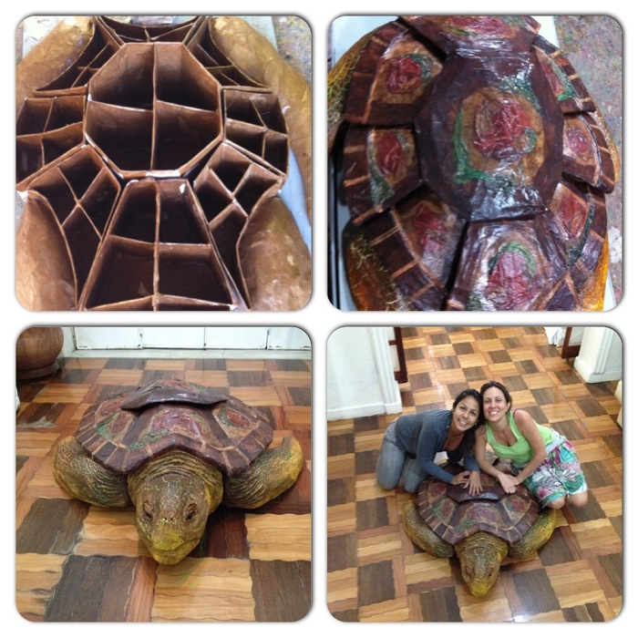 design inspirado nas tartarugas marinhas 12