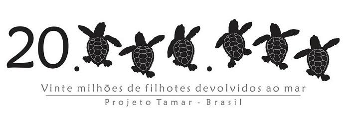 tartarugas marinhas 15