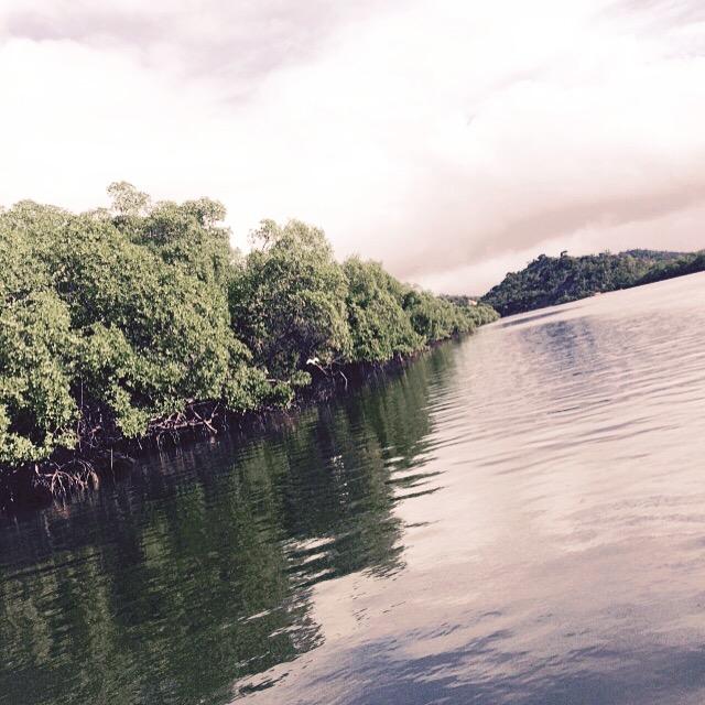 passeio de catamara blog (66)