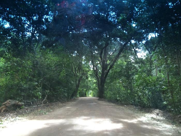 passeio ponta a ponta  (3)